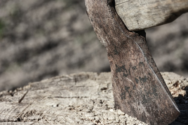 Blade of ax sticks out in a wooden stump, woodcutter, cutting down trees, fear, violence, crime, copy space Premium Photo