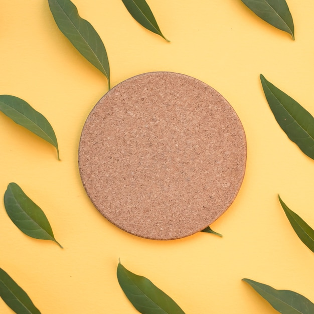 Blank circular cork surrounded with green leaves on yellow background Free Photo