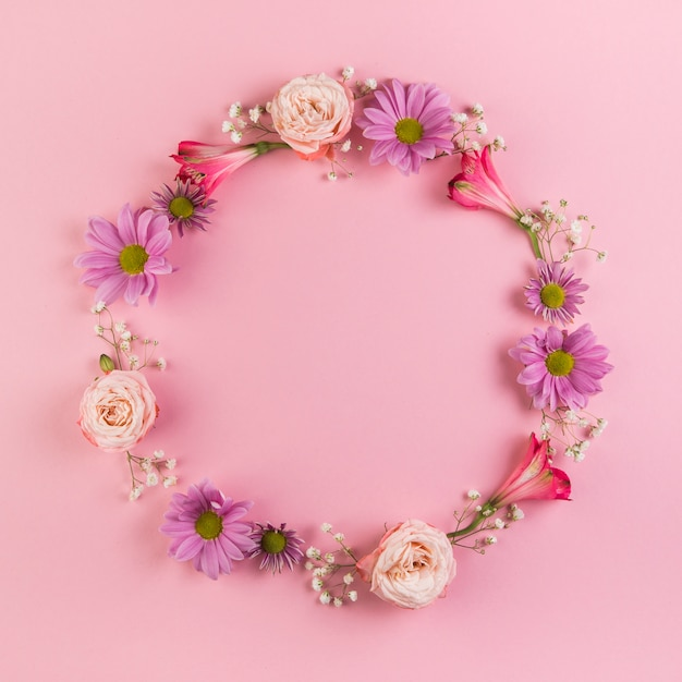 Blank circular frame made with flowers on pink background Free Photo