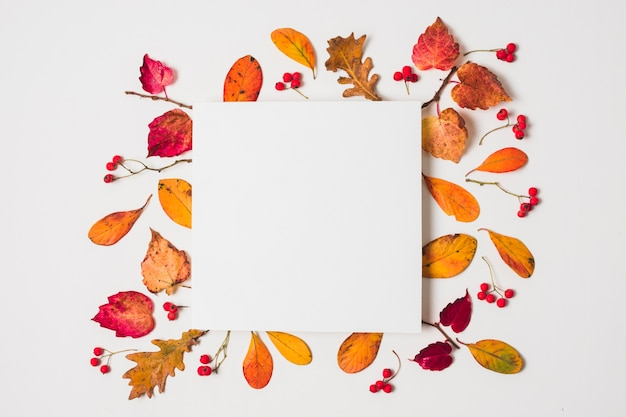 Blank copy space with colorful autumn leaves frame Free Photo