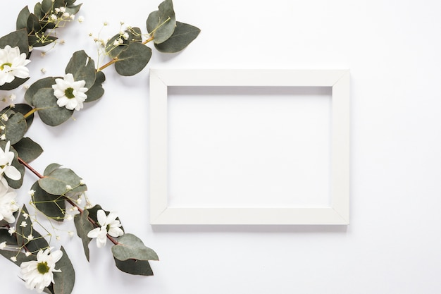 Blank frame with plant branches and flowers Free Photo