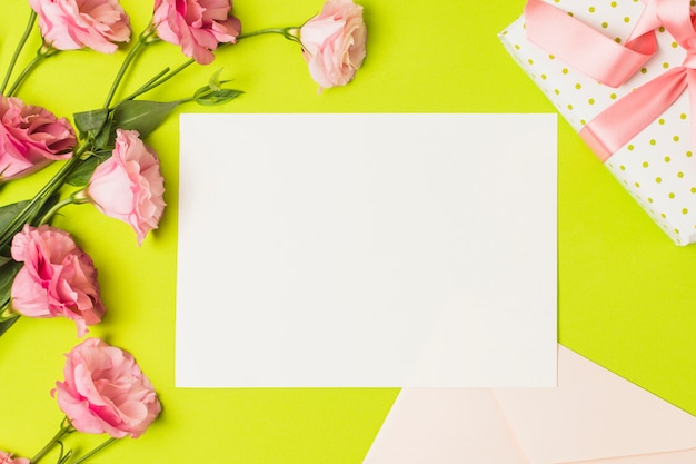 Blank greeting card; gift and pink eustoma flower over bright green backdrop Free Photo