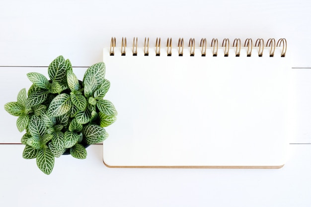 Blank notebook paper on white wood background Premium Photo