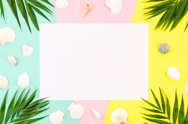 Blank paper with palm leaves and shells Free Photo