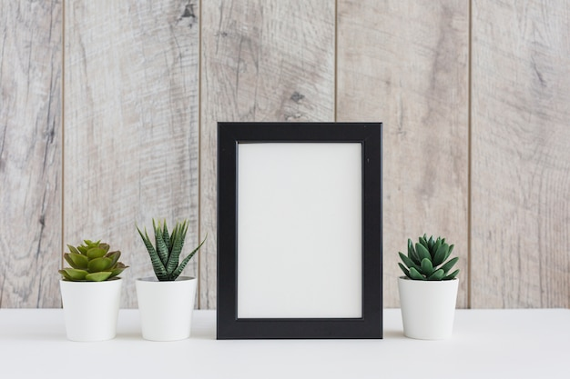 Blank picture frame with succulent plant against wooden wall Free Photo