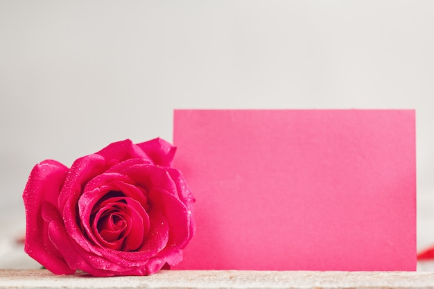 Blank pink greeting paper card with one pink rose Premium Photo