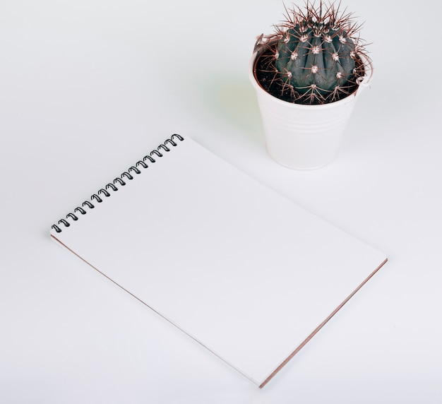 Blank spiral notepad near the cactus bucket on white background Free Photo
