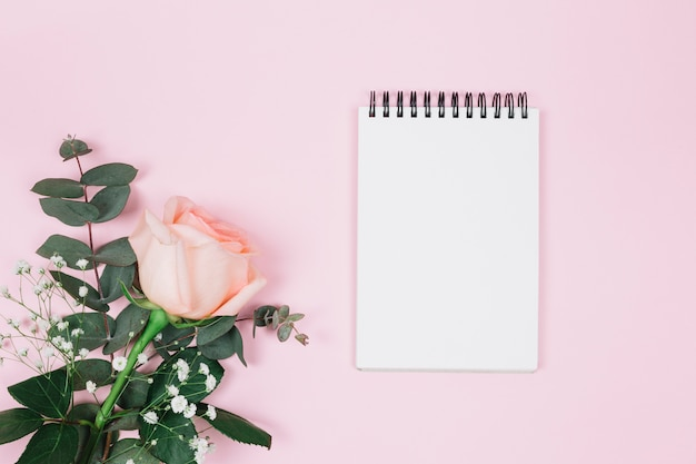 Blank spiral notepad with rose and gypsophila flower against pink background Free Photo