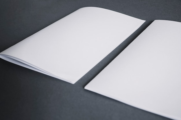 Blank stationery concept with two booklets Free Photo