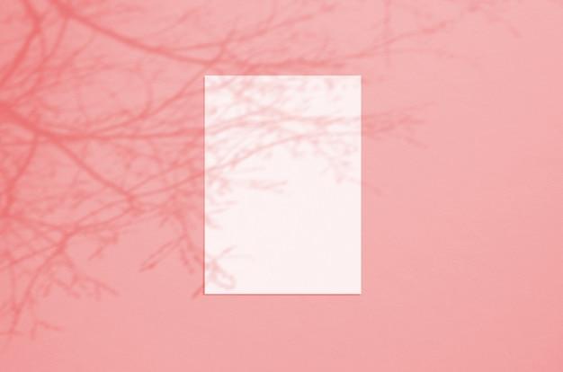 나무 그림자 오버레이 빈 흰색 세로 종이 시트 5x7 인치 프리미엄 사진