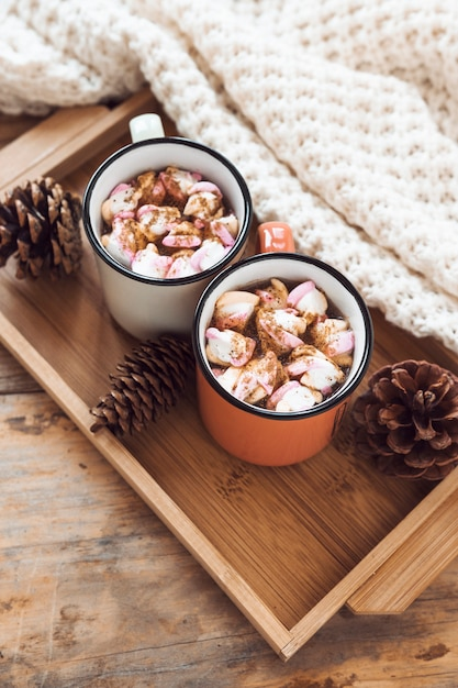 Blanket near tray with hot chocolate and cones Free Photo
