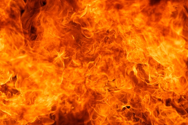 Blaze fire flame texture Premium Photo