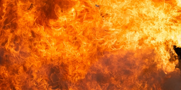 Blazing fire flame background and abstract Premium Photo