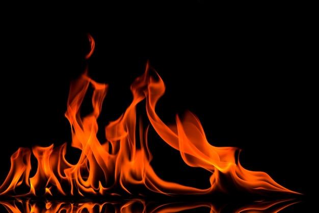 Blazing fire flame on black background Premium Photo