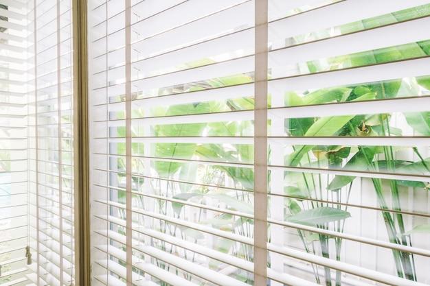 Blinds window Free Photo