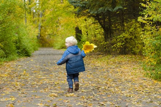 Белокурый мальчик, бегущий по осеннему парку Premium Фотографии