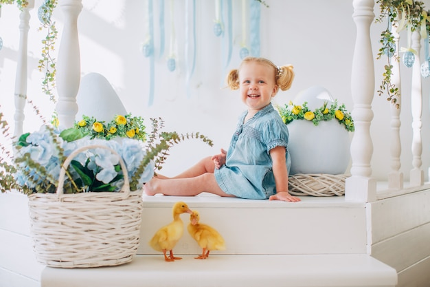 Blondel little girl in blue dress and two ponytales playing with yellow fluffy ducklings and laughing. easter, spring. Premium Photo