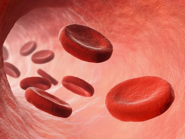 Bloodstream illustration Premium Photo