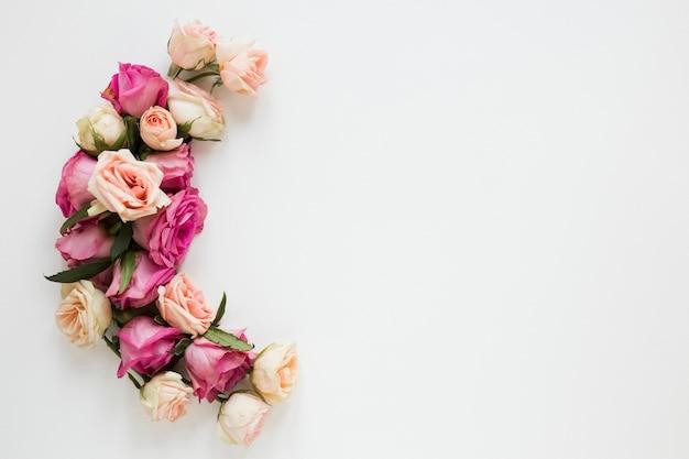 白い背景の上面に咲くフラワーアレンジメント Premium写真