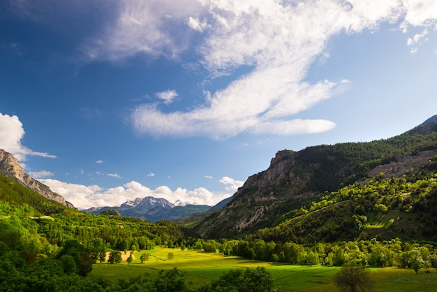 Blooming meadow idyllic mountain landscape with snow capped mountain range ecrins massif mountain range Premium Photo