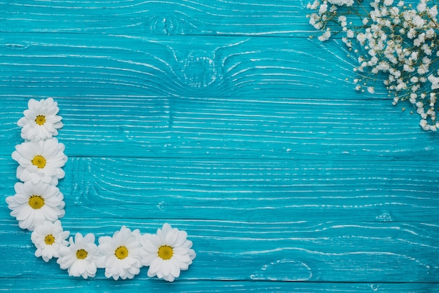 Blue background with floral decoration Free Photo