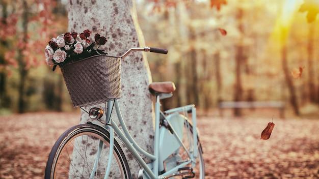 Blue bicycle beside the tree Premium Photo