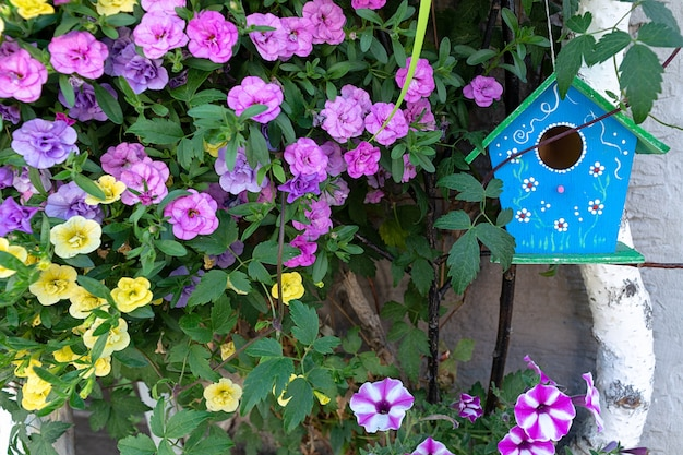 A blue birdhouse hangs on a birch surrounded by petunia flowers. Premium Photo
