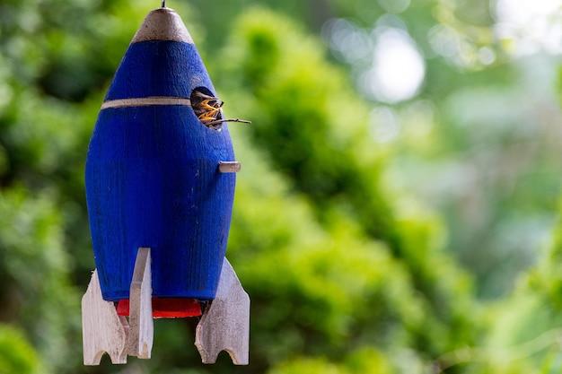 Blue birds nest in the shape of a rocket Free Photo