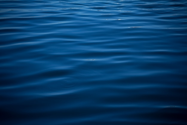 Blue color abstract background of liquid wave based on water wave Premium Photo