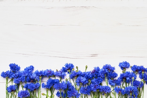 Blue cornflower border on white wooden background. top view, copy space. Premium Photo
