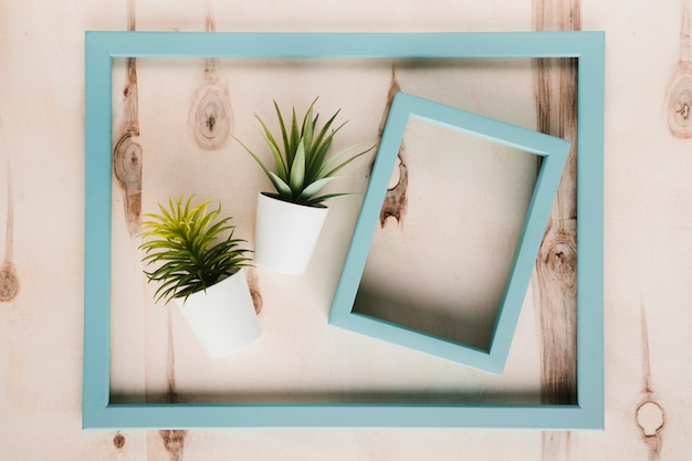 Blue frames and plants with wooden background Free Photo