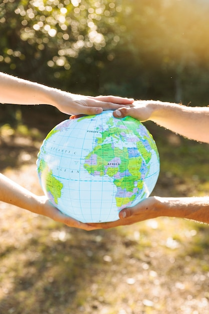 Blue globe in hands with forest on background Free Photo