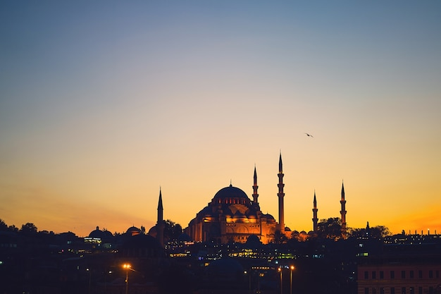 Mosque sunset vectors photos and psd files free download - Mezquita de cordoba de noche ...