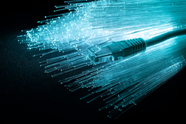 Blue optic fiber with ethernet cable Free Photo