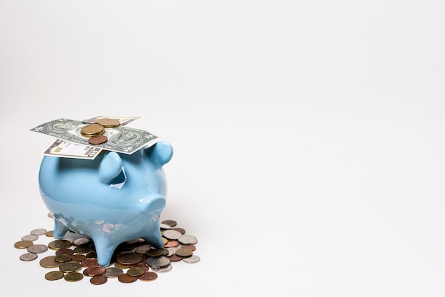 Blue piggy bank with money and coins Free Photo