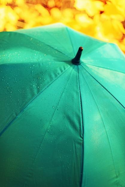 15825f4131644 Blue umbrella with rain drops. autumn weather concept Premium Photo