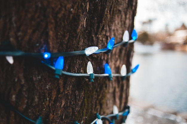 Blue and white string lights Free Photo