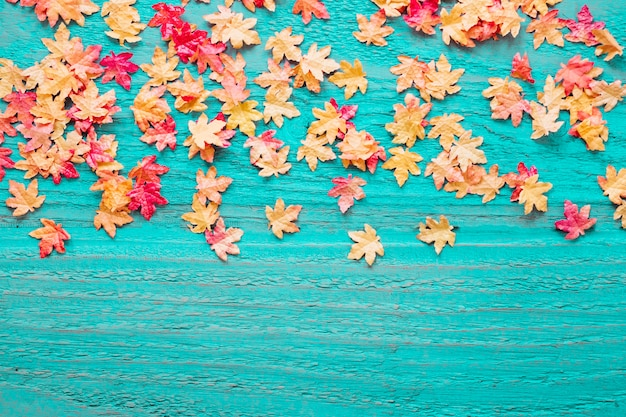 blue wooden background with fall leaves photo free download
