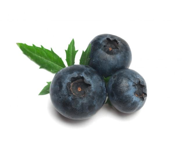 Blueberry Premium Photo