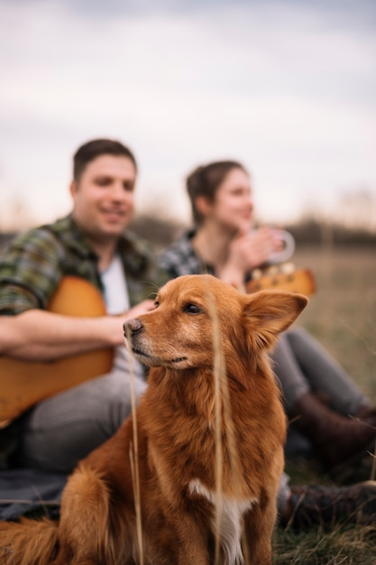 かわいい犬とぼやけているカップル 無料写真