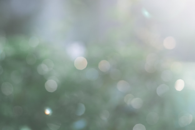 Blurred green nature background with natural light with copy space. Premium Photo