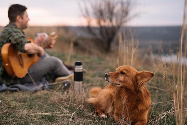 かわいい犬とぼやけている男 無料写真