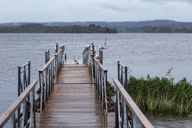 Boardwalk to lake, blue water, cloudy sky. Premium Photo