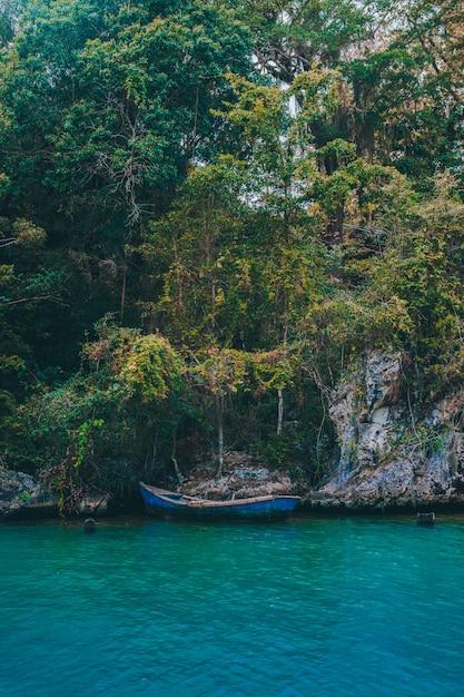 Boat river Premium Photo
