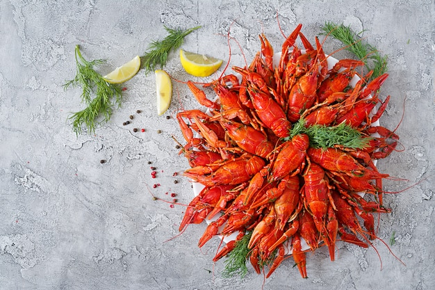 Boiled crayfish with dill.  copy space Free Photo