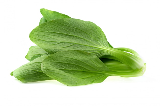 Bok choy cabbage isolated on a white background Premium Photo
