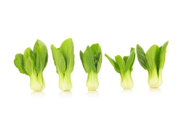 Bok choy vegetable isolated on the white background Premium Photo