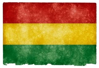 Bolivia grunge flag  grimy Free Photo