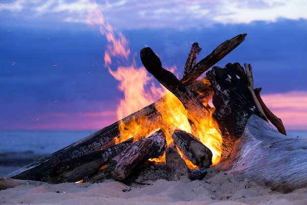 Bonfire on the beach Free Photo