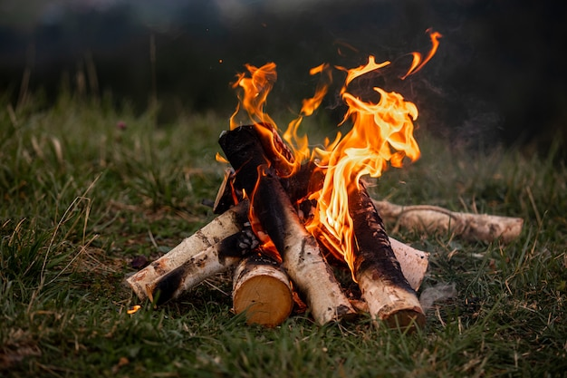 Bonfire. orange flame of a fire. bonfire on the grill with smoke. bonfire background. campfire surrounded Premium Photo